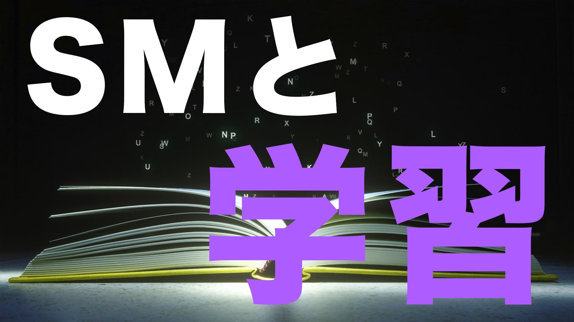 SM Research No.13【〜SMと学習〜】